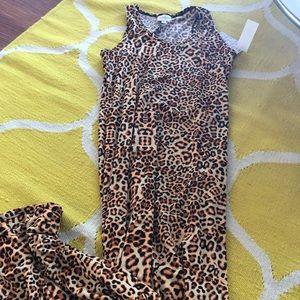 Leopard 🐆 Dani